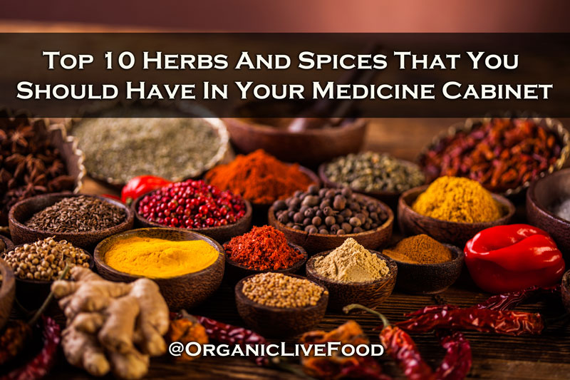 Organic Live Food/Top 10 medicinal herbs and spices